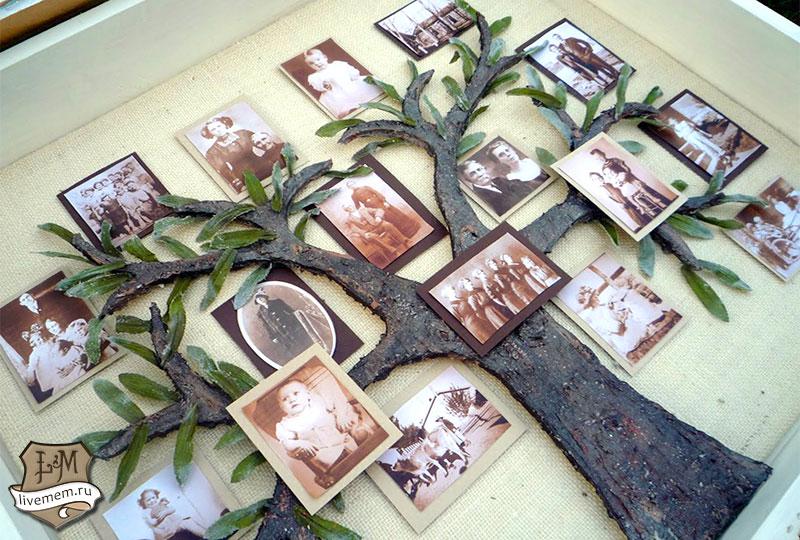 Древо семьи фото сделать своими руками