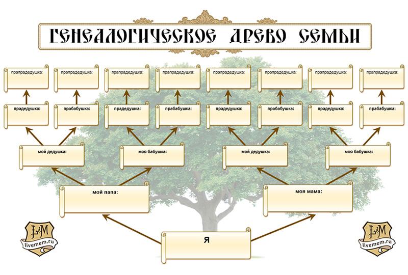Как можно оформить фамильное (семейное) дерево своими 31