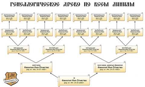 Как сделать генеалогическое дерево в excel