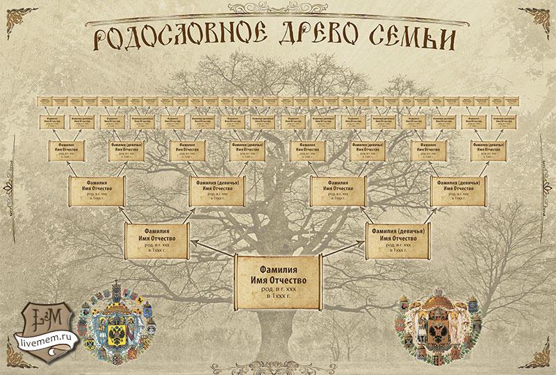 Заказать биологическое древо